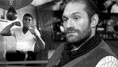 Silná slova Lewise: Fury není šašek, létá a bodá jako Muhammad Ali