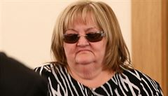 Kontrolní výbor Jihomoravského kraje nenašel v kauze Mrencová chyby ve smlouvách