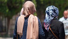 Útok ženy na muslimku u pražského koupaliště vyhodnotila policie jako přestupek