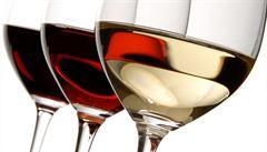 Konec pančování? Brněnští vědci vyvíjí systém, který rozpozná odrůdu vína