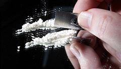 Převáželi ho jako banány. Portugalci zadrželi 800 kilogramů kokainu