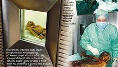 Ötzi čelil dvěma útokům