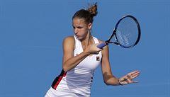 O titul s Plíškovou a Kvitovou. Pála zveřejnil nominaci na finále Fed Cupu