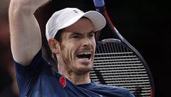 Turnaj mistrů startuje: vrátí se na trůn Djokovič, nebo jej uhájí Murray?