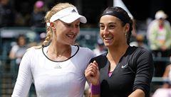 Žabomyší války. Svaz chce zakázat tenistkám start ve finále Fed Cupu proti Češkám