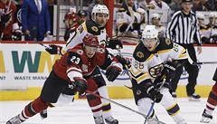 NHL: Pastrňák se radoval z desátého gólu sezony. Neuvirth se zranil