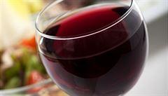 Je víno lék? Jeho užitek je nicotný, převažují škodlivé účinky, zjistili francouzští vědci