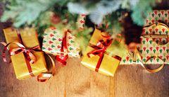 Jak budou uchazeči o Hrad trávit Vánoce? Zemanovi se do Lán 'slétne rodina', Drahoš chce lenošit