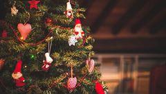 """Každý má v mozku """"vánoční"""" zóny, zjistili vědci"""