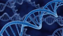 Vědci rozluštili záhadu endogenních retrovirů