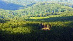 Krása šumavské přírody na stránkách knih. Správa parku vydává dvě nové publikace