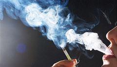 Tabákové firmy mají zaplatit kuřákům 300 miliard za poškozené zdraví