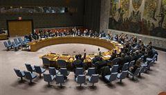 USA zablokovaly rezoluci Rady bezpečnosti OSN o klidu zbraní, dokument zmiňoval WHO