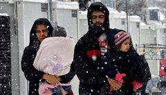 AfD šokovala parlament návrhem vracet syrské uprchlíky do vlasti