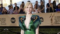 Actress Nicole Kidman arrives at the 23rd Screen Actors Guild Awards in Los...