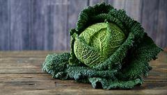Královna zimní zeleniny. Kapusta obsahuje vitaminy i antioxidanty