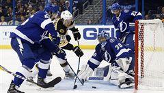 NHL: Krejčí přispěl k výhře Bostonu, skóroval Faksa i vracející se Hertl