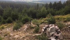 Lesy ČR čelí exekuci na své sídlo i další majetek kvůli stromům u trati
