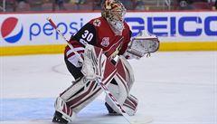 NHL: Langhamer má za sebou vítězný debut, Vrbata opět skóroval