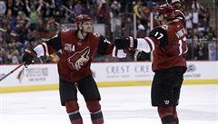Vrbata rozhodl v závěru svým 600. bodem v NHL o výhře Arizony