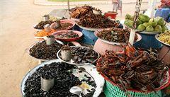 Hmyz jako jídlo? Evropané si musí začít zvykat