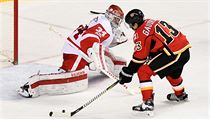 Detroit Red Wings vs. Calgary Flames