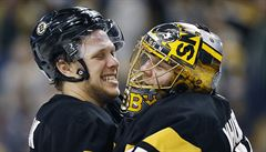 NHL: Pastrňák pomohl Bostonu přihrávkou k výhře, Mrázek inkasoval čtyřikrát