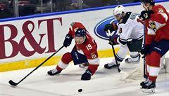 NHL: Washington si jako první tým zajistil play off, asistoval Palát a Hanzal