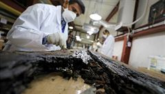 Archeologové v Egyptě vykopali část lodi. Věří, že patří slavnému faraonu Cheopsovi