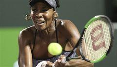 Venus Williamsová vyřadila v Miami světovou jedničku Kerberovou
