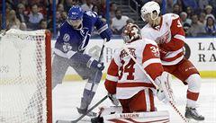 NHL: Šustr a Palát režírovali výhru, skórovali i Gudas a Plekanec