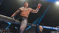 VIDEO: Beast mode on! Slovenské zvíře MMA Gábor Boraros předvedl další ničivé KO