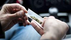 Čeští studenti jsou největší kuřáci marihuany v Evropě