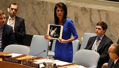 Jsme připraveni sáhnout v Sýrii k další akci, řekla v OSN vyslankyně USA