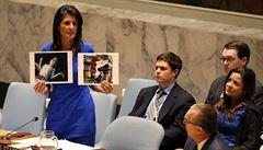 Rusko brání Asadův režim v OSN, svědkové viní z útoku 'sarinem a chlórem' syrské letectvo