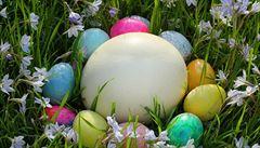 Matematici dumají, ale tvar vejce se jim definovat nedaří