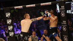 Český zápasník MMA Hořejší zbourá další milník: představí se v prestižním Bellatoru