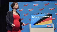 'Islám nepatří k Německu, ale k Merkelové.' AfD míří do Bundestagu, ale nikdo s nimi nechce spolupracovat