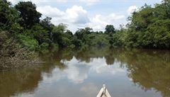 Obavy o domorodce: koronavirem se nakazilo 20 000 amazonských indiánů