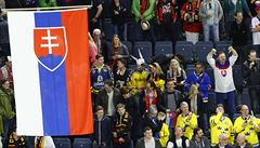 VIDEO: Nad Tatrou sa neblýskalo. Slovákům pustili po zápase slovinskou hymnu