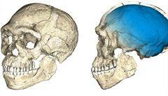 Moderní člověk se vyvinul v Africe, teprve potom zamířil do Evropy, zjistili vědci