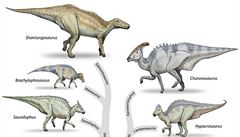 Zeptali jsme se vědců: Vydávali dinosauři nějaké zvuky, nebo byli němí?