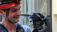 Uvízlou straku nahlásil Kohout, zachránil hasič Křepelka, vyfotil Krahulík a zprávu napsal Kavka