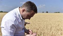 Česku hrozí sucho. Silně postiženo suchem je už 11 okresů, říká Jurečka