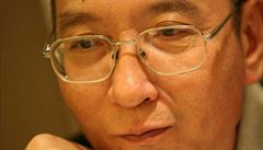Léčbu čínského disidenta s rakovinou řídí bezpečnostní služba, ne lékaři, tvrdí Němci