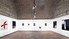 Výstava Roberta Šalandy. Nejednoznačná jednoduchost