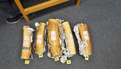 Celníci v Praze chytili pašeráka s 35 kg sloních klů a pervitinem