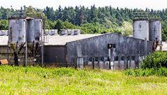 Překvapivé zjištění: velká část tábora v Letech nebyla zničena, trosky byly vidět ještě při stavbě vepřína