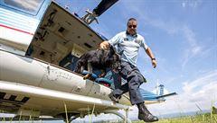 Policejní psi cvičili v Mostě přelety vrtulníkem