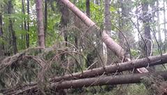 Turisté nesmí po sobotních bouřkách vstupovat do vojenských lesů na Šumavě